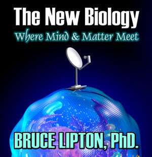 The New Biology: Where Mind And Matter Meet