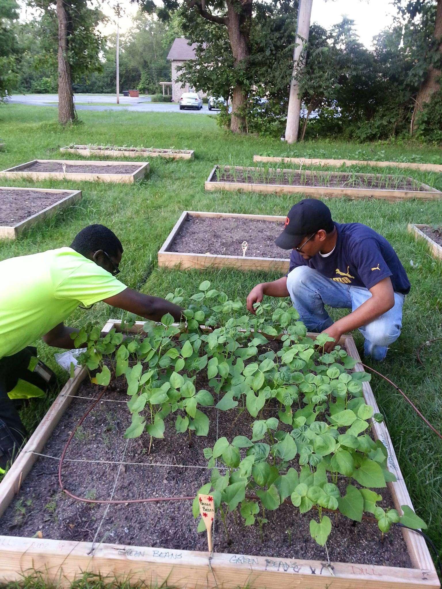 CMN Memorial Community Garden
