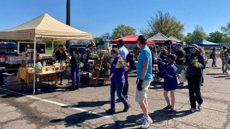 Cville Farmers Market May 15